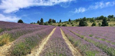 Randonnées à La Motte Chalancon