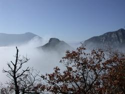 collines dans le brouillard
