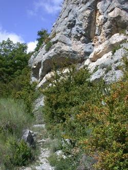 La descente par le sentier de l'Echaillon